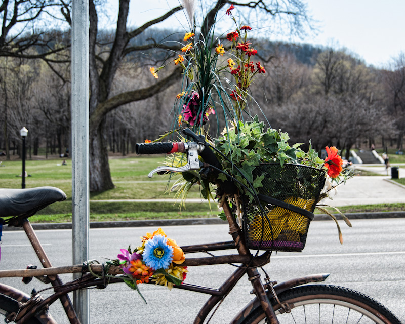 Flower bike on ave du Parc