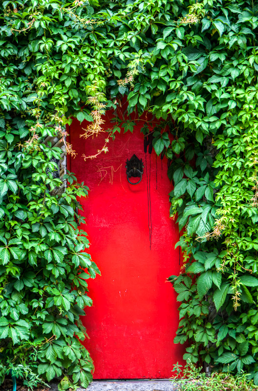 Overgrown red door
