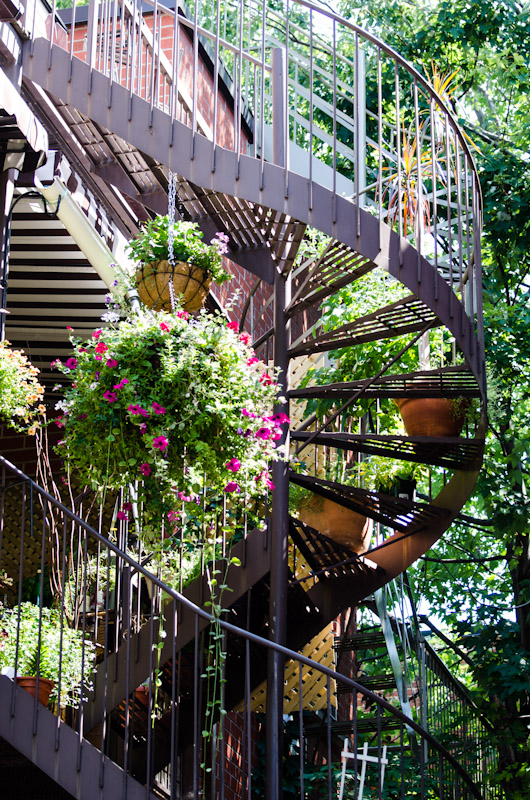 Flowering spiral staircase