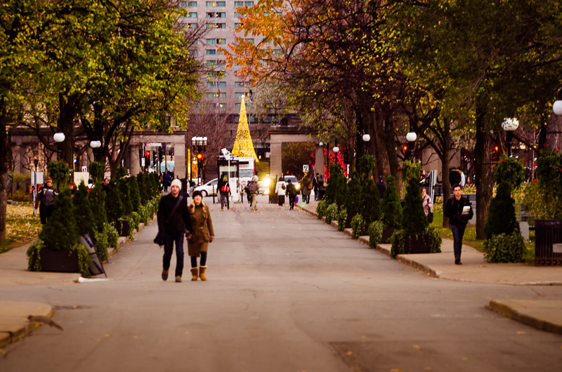 PVM Christmas tree lights from McGill University