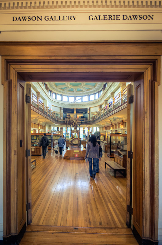 Entrance to Dawson Gallery at Redpath Museum