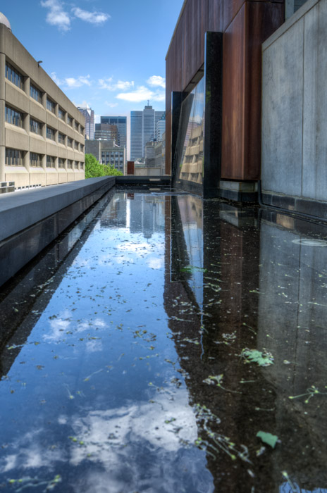 Reflections at McGill University