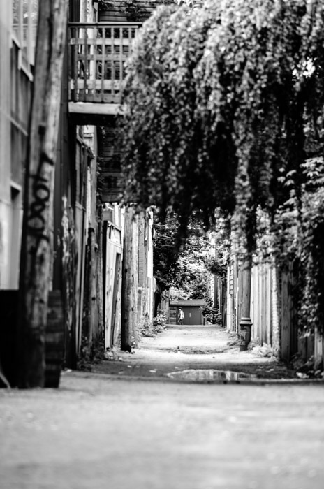The Hanging Gardens of Plateau Alley