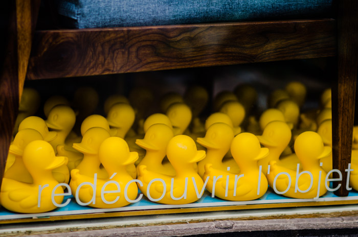 Raft of yellow ducks