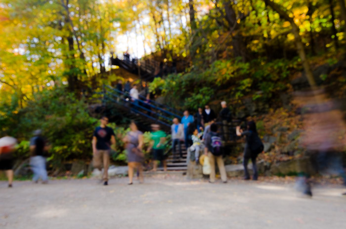 A busy day on Mount Royal