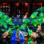 Chinese Magic of Lanterns event