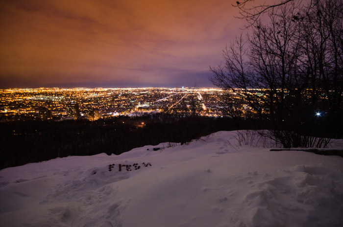 Montreal East from Mount Royal