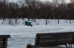 Lone skater at Parc Lafontaine