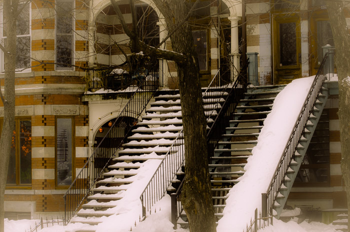 Snow covered steps on Esplanade Avenue