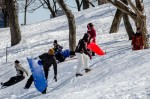 Toboggan fun on Mount Royal