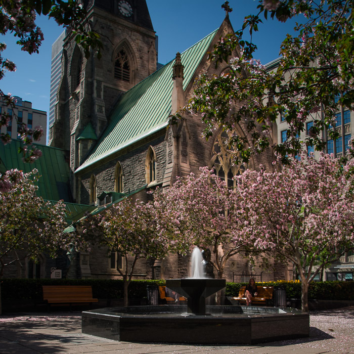 Raoul Wallenberg square and Christ Church Cathedral