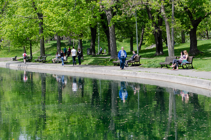 A walk in Parc Lafontaine