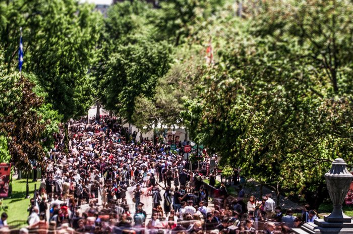 Summer 2014 McGill Graduation