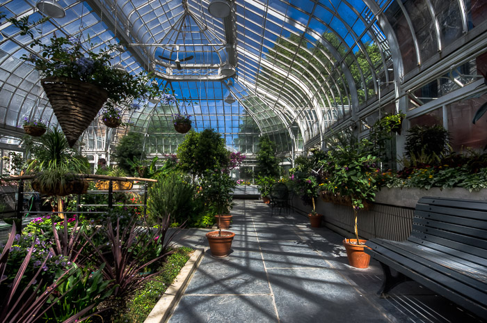 Inside the Westmount greenhouse