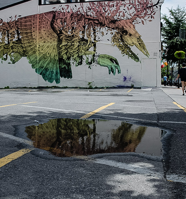 Alexis Diaz mural in a puddle