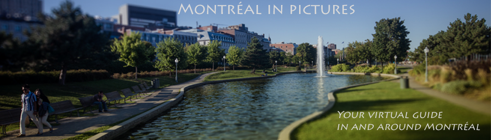 Montreal In Pictures