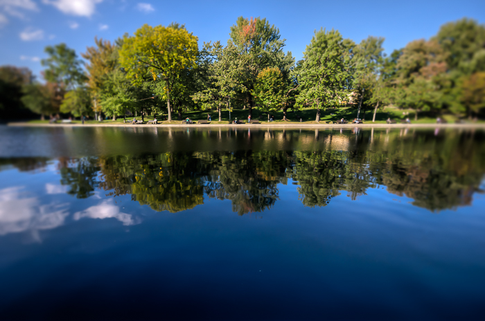 Early Autumn in Parc Lafontaine