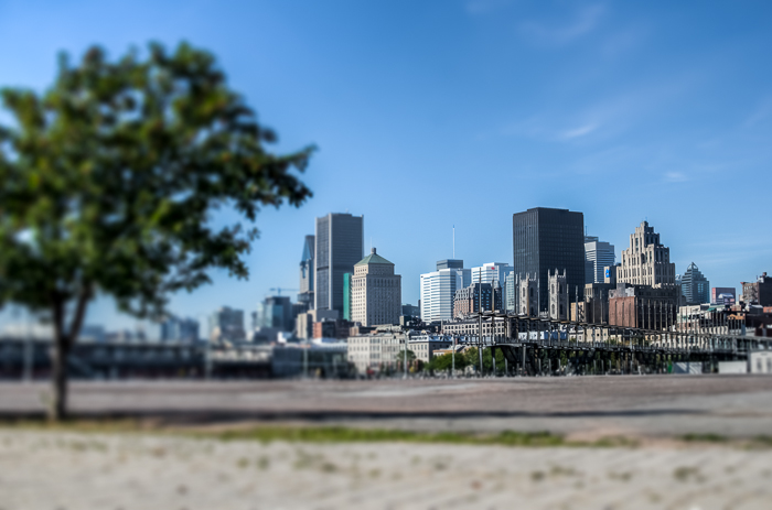 Montreal skyline from Jacques Cartier Quay