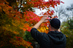 Paul capturing some Canadian autumn colours